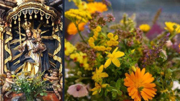 Bild zum Eintrag 'Kräutersegnung zu Mariä Himmelfahrt / Blagoslov zelišč'