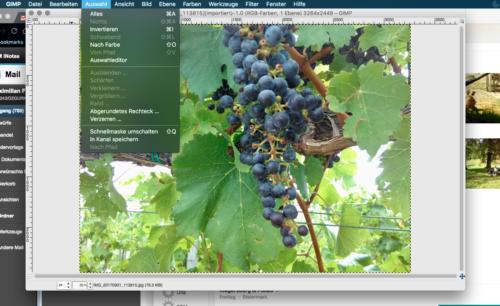 Gimp- ein Gratis-Programm für die Bildbearbeitung (© Foto: fotomax)