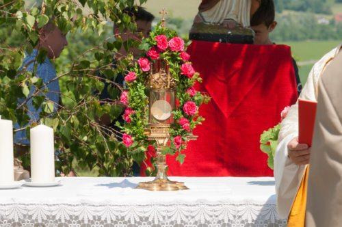 (© Foto: gezanetwork.com)
