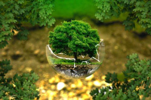 Nachhaltig leben (© Foto: pixabay)
