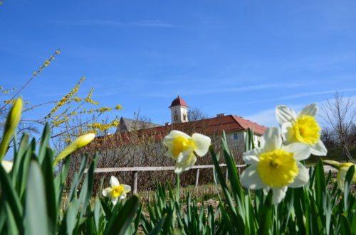 Frühling im Stift St. Georgen  (© Foto: Stift St. Georgen)
