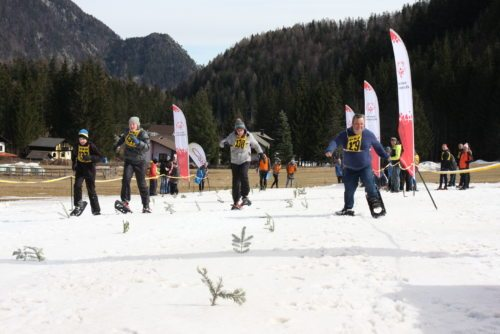 Die Sportler und Sportlerinnen waren mit vollem Einsatz dabei (© DSG/Kärnten)