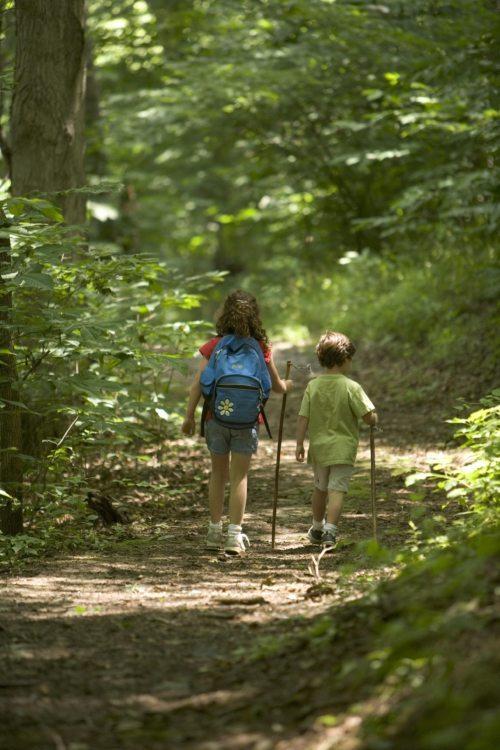 Gemeinsam unterwegs: Die Kinderwallfahrt der Katholischen Jungschar bietet Gelegenheit, neue Freundschaften zu schließen. (Foto: Katholische Jungschar)