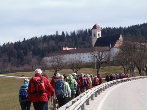 Vierberge Weg (© Foto: Monika Gschwandner-Elkins)