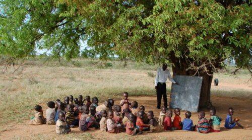 Die Augustsammlung der Caritas hilft, die Ernährungssituation von Menschen langfristig zu verbessern. Das zeigen u. a. Projekte in Kenia und Uganda. (© Foto: caritas.at)